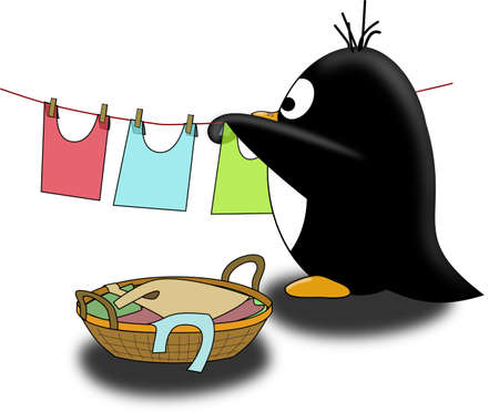 seabird: Penguin dry the linen