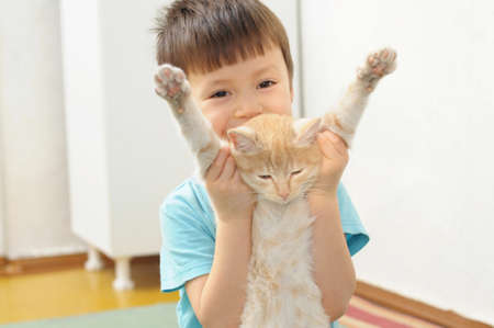 forcing: Boy playing with lazy ginger cat. Cat looks like do not want to play