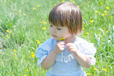 Little girl with flower enjoying nature in summer.  Cute child with dandelion flower, adorable and beautiful