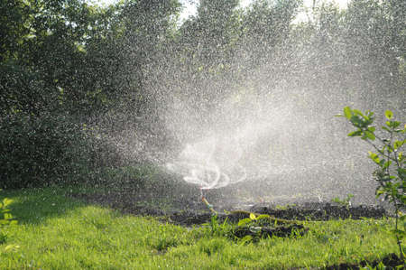 sprinkler watering grass in garden. twisting water splashes, automatic lawn care, personal irrigation system in townhouse