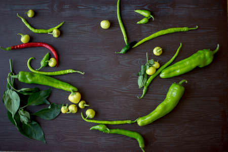 I grew up in the garden peppers fresh and colorful