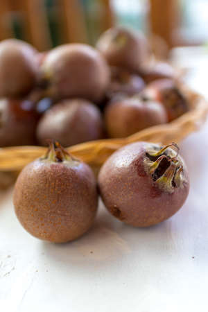 medlar is a brownish fruit of the winter and needs to mature and soften for food