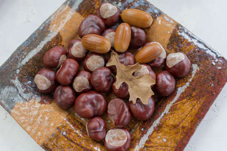 horse chestnuts and acorns and dry leaves very nice