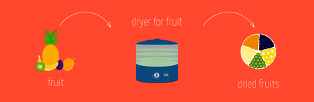 dried: simple recipe instructions on how to make dried using a dryer for fruits and vegetables.