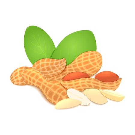 handful: illustration of a peanut