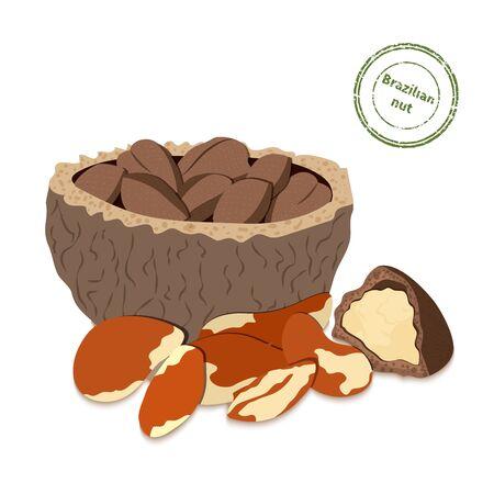 brazil nut: illustration of Brazil nuts