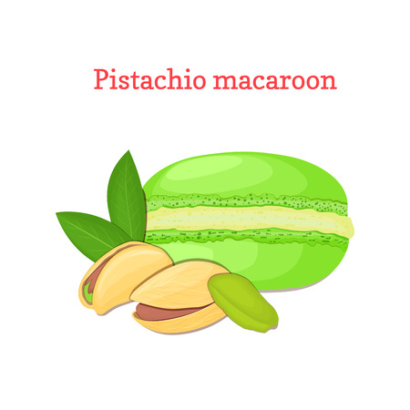 nutty: Vector illustration of a delicious French dessert. Macaroon pistachio. Macaron delicious green nutty sweetness isolated on white background to design a menu, packaging, confectionery decoration.
