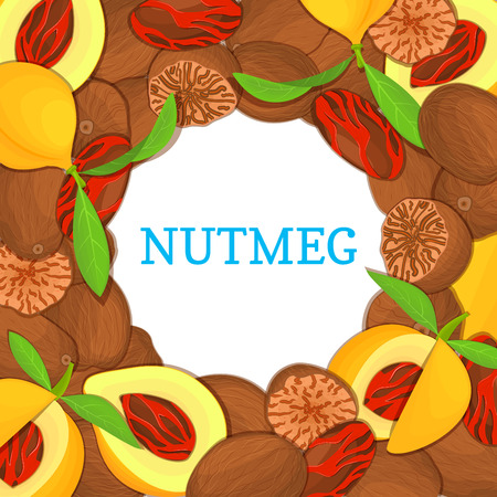 Round colored frame composed of Nutmeg spice fruit. Vector card illustration. Nutmeg nuts frame, fruit in the shell, whole, shelled, leaves appetizing looking for packaging design of healthy food Vetores