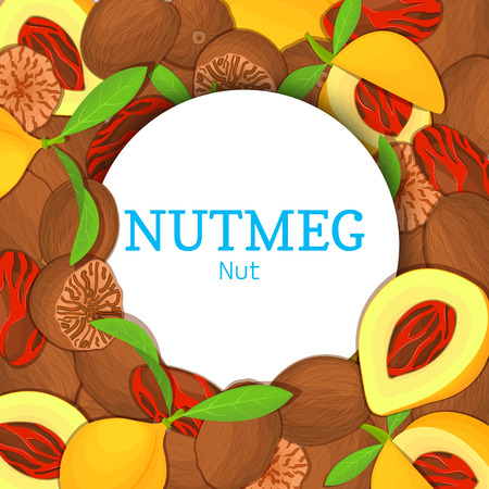 Round white frame on nutmeg background. Vector card illustration. Circle spice nuts frame, nutmeg nut fruit in the shell, whole, shelled, leaves appetizing looking for packaging design of healthy food Ilustração