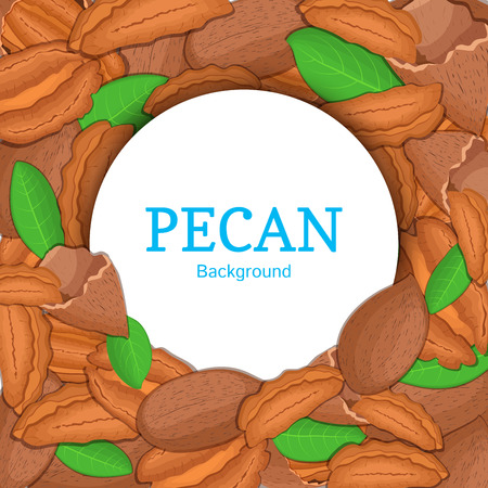 pecan: Round white frame on pecan nut background. Vector card illustration. Circle Nuts frame, walnut fruit in the shell, whole, shelled, leaves appetizing looking for packaging design of healthy food