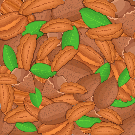 closely: The pecan background. Closely spaced delicious nuts vector illustration. Nuts pattern, walnut fruit in the shell, whole, shelled, leaves, appetizing looking for packaging design of healthy food Illustration
