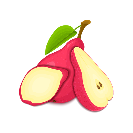 vegetarianism: Composition of several pears. Red vector pear fruits whole and slice appetizing looking. Group of tasty fruits colorful design for the packaging of juice, breakfast, healthy eating, vegetarianism