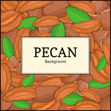 pecan: The square frame on pecan background. Vector card illustration. Nuts frame, pecan fruit in the shell, whole, shelled, leaves, appetizing looking for packaging design of healthy food Illustration