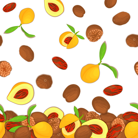Vector illustration of falling nutmeg nuts. Background of a spicy nut. Pattern of a nutmeg fruit in the shell, whole, shelled, leaves appetizing looking for packaging design of healthy food