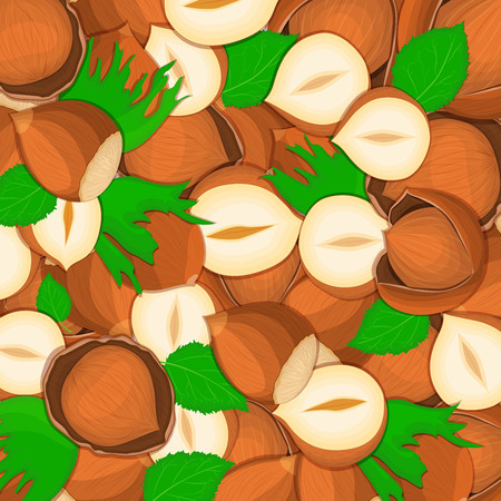 closely: The hazelnut nut background Closely spaced delicious hazelnut vector illustration Nuts pattern walnut fruit in the shell whole shelled leaves appetizing looking for packaging design of healthy food