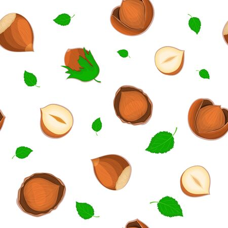 Vector seamless pattern hazelnut nut. Illustration of peeled nuts and in shell isolated on white background it can be used as packaging design element printing brochures on healthy and vegetarian diet