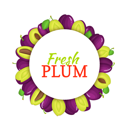 prune: Round colored frame composed of delicious plum fruit. Vector card illustration. Circle plum frame. Purple fresh plums fruits appetizing looking for packaging design of juice, breakfast, healthy eating