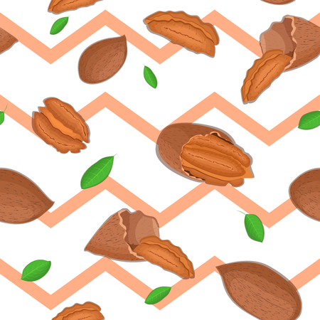 pecan: Seamless vector pattern of pecan nut. Striped zig-zag background with delicious walnut, leaves. Illustration can be used for printing on fabric, textile in design packaging, packaging design