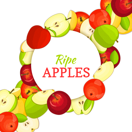 brigh: Round white frame on ripe apple diagonal composition background. Vector card illustration. Delicious fresh and juicy apples whole, peeled piece of half slice leaves seed. appetizing looking