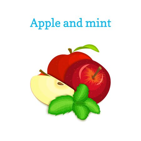 mint leaf: Vector composition of a few red apples and mint leaves. Red apple fruits appetizing looking. Group of tasty ripe apple with pepper mint leaf packaging design of juice, breakfast, healthy vegan food Illustration