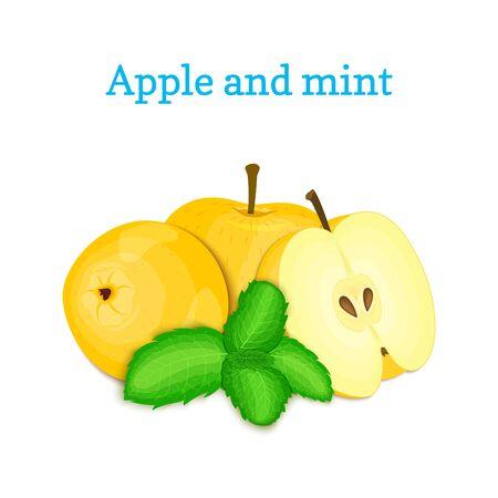 Fresh apple fruits appetizing looking.