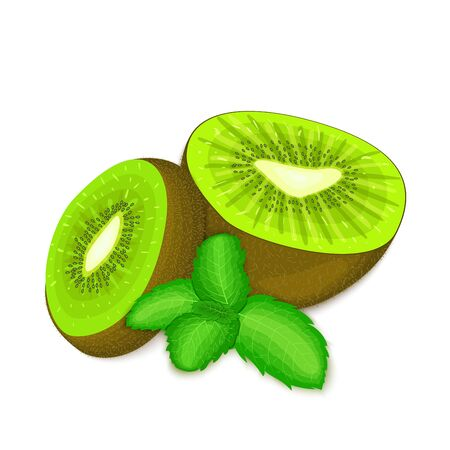 mint leaf: Composition of several kiwi and mint leaves. Ripe vector kiwifruits with fresh pepper mint leaf appetizing looking. Group of tasty fruits colorful design for packaging of juice breakfast, healthy food