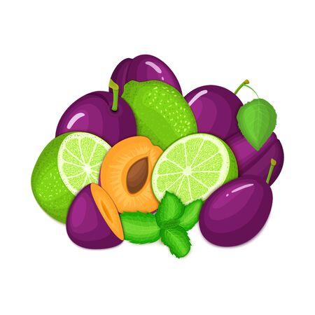 prune: Composition of several plum citrus lime fruit and mint leaves. Ripe vector plums limes fruits with fresh pepper mint leaf. Group of tasty fruits for design packaging juice cocktail healthy food