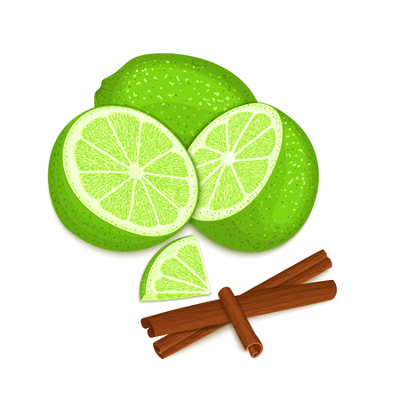 Vector composition of a citrus lime fruit and spice. Green limes whole and cut and cinnamon stick. Group of tasty fruits colorful design for the packaging of juice, breakfast, healthy eating, vegan Illustration
