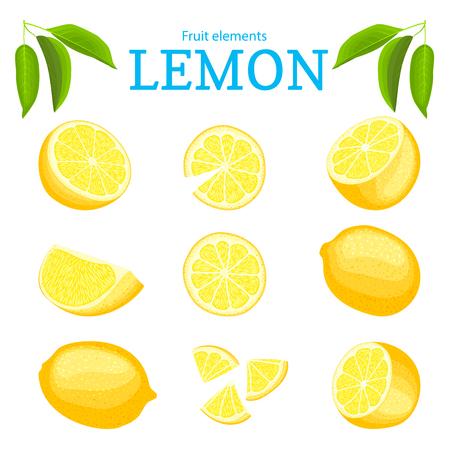 Insieme di vettore dei frutti gialli tropicali maturi dei limoni. Pezzo di mezza fetta sbucciata di agrumi. Raccolta di deliziosi elementi di design di limone per il confezionamento di succo colazione alimenti salutari