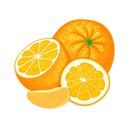 marmalade: Vector composition of a citrus orange fruits on white background.