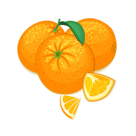 marmalade: Vector composition of a citrus orange fruits on white background. Mandarin whole and cut . Group of tasty ripe tropical orange fruit, designer elements for packaging juice breakfast health food, tea. Illustration