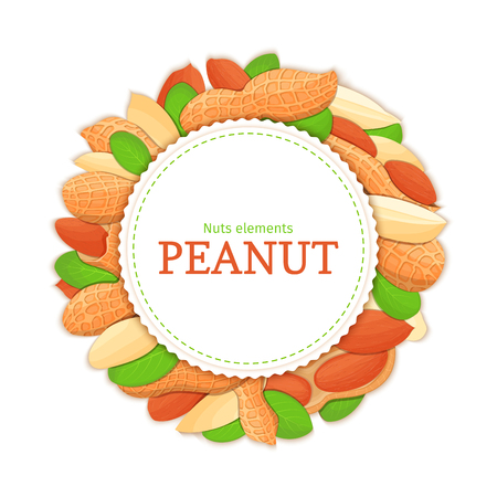 Round white frame composed of peanut nut. Vector card illustration. Circle nuts frame, groundnut fruit in the shell, whole, shelled, leaves appetizing looking for packaging design of healthy food
