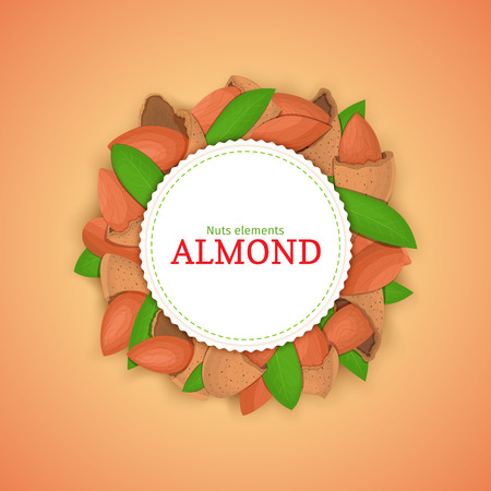 nutshell: Round colored frame composed of almond nut.
