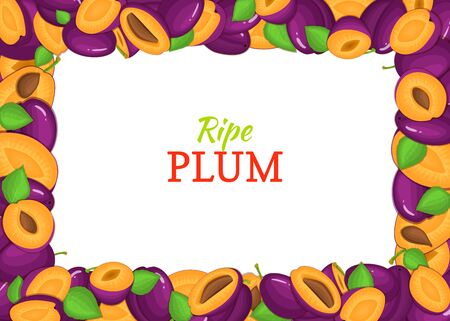 closely: Horizontal Rectangle colored frame composed of delicious plums fruit. Illustration