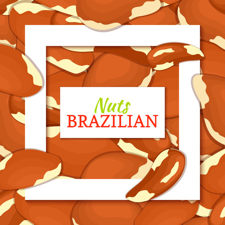 handful: Square white frame and rectangle label on brazilian nuts background. Vector card illustration. Illustration