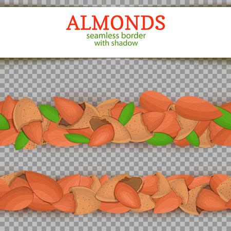 Almond Horizontal seamless border. Vector illustration card.