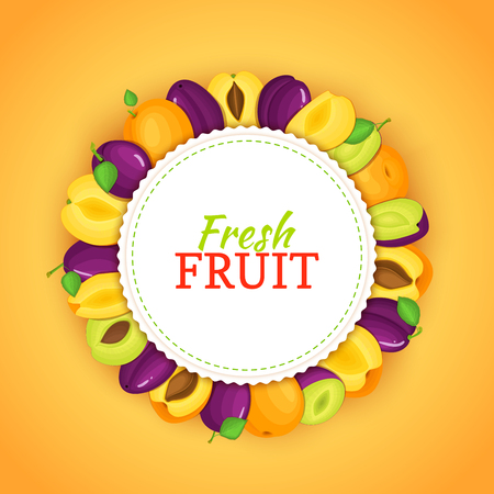 prune: Round colored frame composed of apricot plum. Vector card illustration. Fruit label.