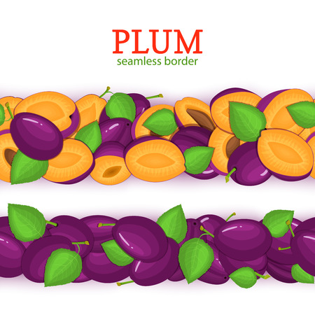 Ripe plum Horizontal seamless borders. Vector illustration card. Wide and narrow endless strip with Juisy plums fruits with shadow transparent whole and slice, leaf. Infinite fruit border. Illustration