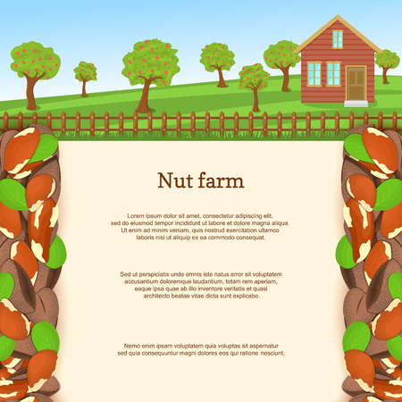 filbert nut: Vector illustration of a brazilian nut farm. Brazilnut border. House, fence, fruit, trees, background with paper texture for menu design, food packaging, breakfast, diet, detox.