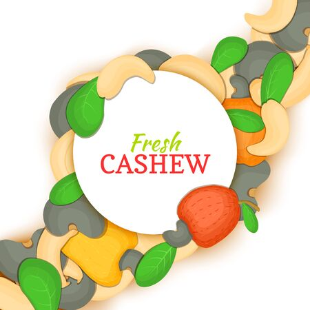 Round white frame on cashew nut diagonal composition background. Vector card illustration. Cashewnut frame, filbert fruit in the shell, whole, shelled, leaves for packaging design of healthy food menu Illustration