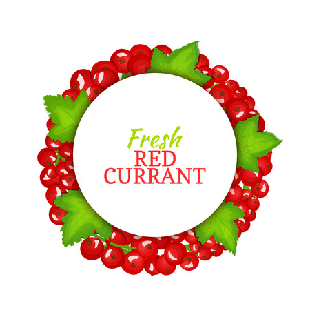 red currant: Round colored frame composed of red currant. Vector card illustration. Fruit label. Circle currant berries label fruit and leaves for packaging design of healthy food, detox, cosmetics cream, jam,