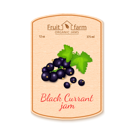 red currant: A Vector black currant jam lable. Composition of ripe fruits. Design of a sticker for a jar with black currant jam, fruit marmalade, juice, smoothies. Sticker in retro style with texture for your design Illustration