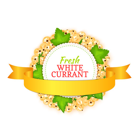 Round colored frame composed of white currant with gold ribbon. Vector card illustration. Fruit label. Circle currant berries label fruit and leaves for packaging design of detox, cosmetics cream, jam, juice