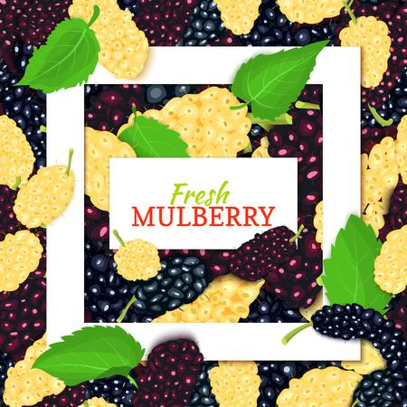 Square white frame and rectangle label on mulberry background. Vector card illustration. Mulberries fruit and leaves for packaging design food juice, jam, ice cream, smoothies, detox, cosmetics, tea Çizim