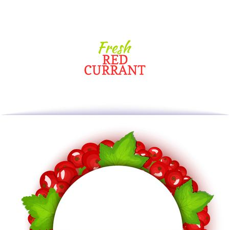 Semicircle colored frame composed of delicious red currant fruit. Vector card illustration. Red currant berry half-round frame for design of food packaging juice breakfast cosmetics tea detox diet