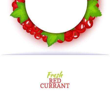 Cadre de couleur demi-cercle composé de délicieux fruits rouges. Illustration de carte vectorielle. Cadre de demi-rond de baie de groseilles rouges pour la conception de l'emballage des aliments jus de petit déjeuner cosmétiques désintoxication de thé régime. Banque d'images - 91338895