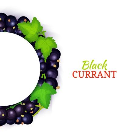 Black currant banner. Illustration