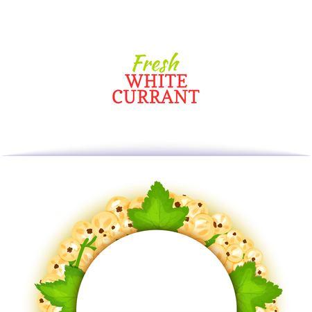 Cadre demi-cercle coloré composé de cassis blanc groseille . vector collection . collection blanche cassis collection pour le jus de thé de l & # 39 ; emballage de la nourriture pour le jus de boissons de jus de désintoxication désintoxication Banque d'images - 91834723