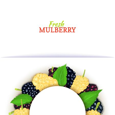 Mulberry icon.