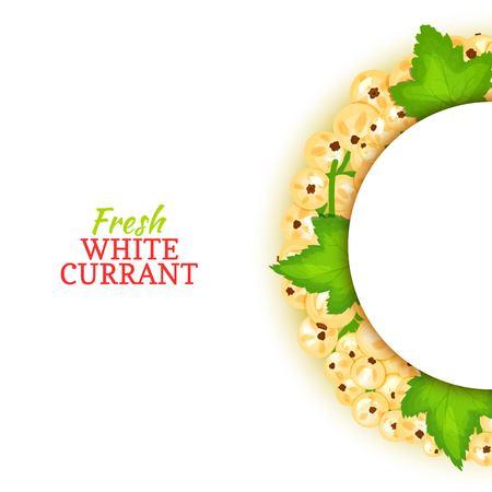 Cadre de couleur demi-cercle composé de délicieux fruits de groseille blanche. Illustration de carte vectorielle. Blanc cassis berry cadre demi-rond pour la conception de l'emballage des aliments jus petit déjeuner cosmétiques désintoxication de thé Banque d'images - 92368755
